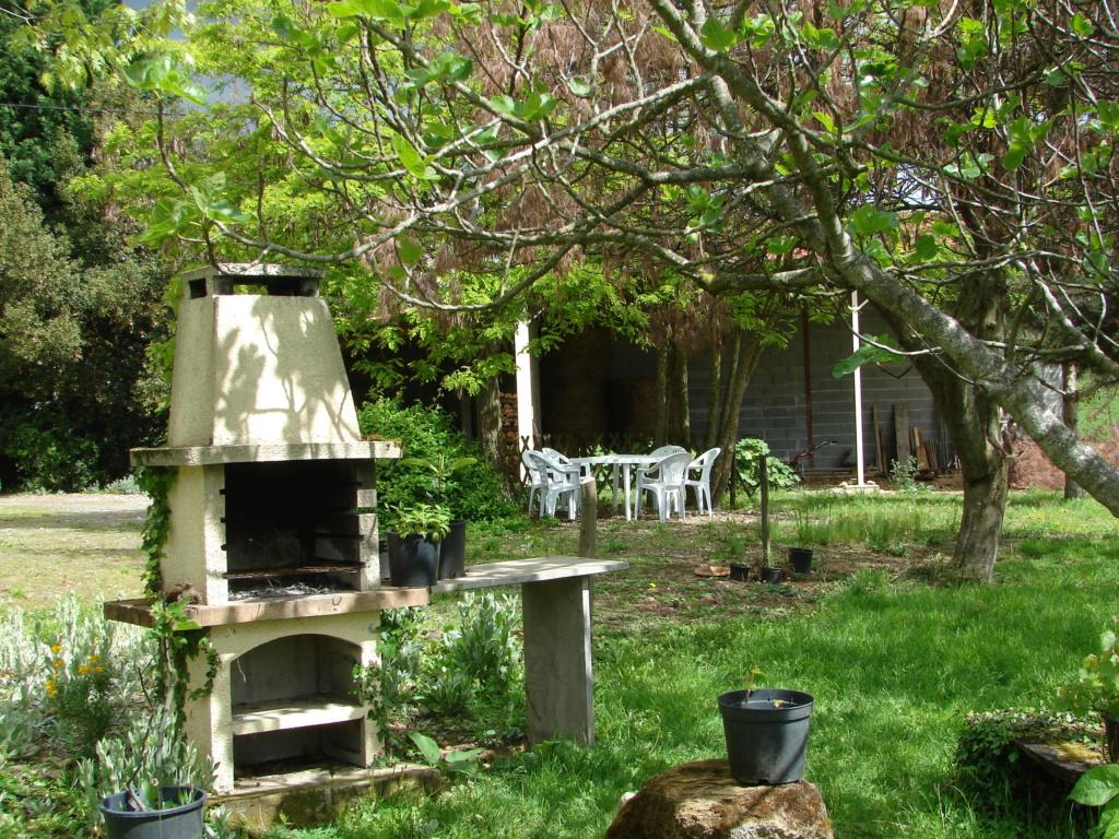 barbecue Dsc04710