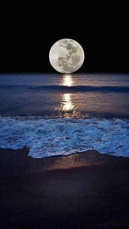 Luna lunera... - Página 13 Fb_im619