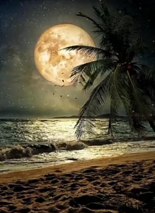 Luna lunera... - Página 13 Scre3174