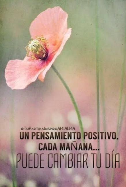 Pensamiento Positivo Scre9051