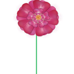 Making a flower with shapes 616