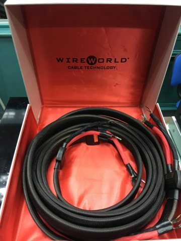 Sold - WireWorld eclipse 6 speaker cable - 3m. (Used) 89bac410