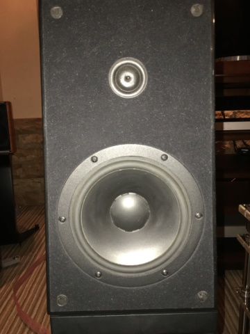 Verity audio Amadis speakers (Used) 987db010