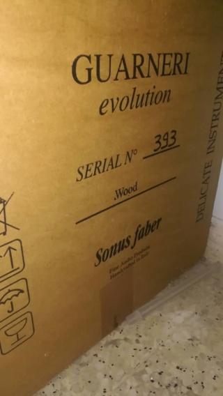 Sonus Faber Guarneri Evolution speaker including stands Dodr6710