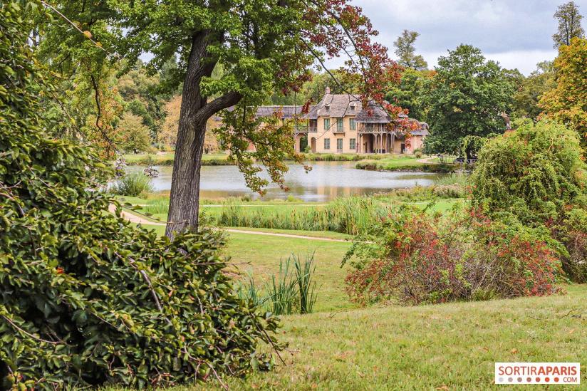 Les arbres admirables du domaine de Versailles 49064210