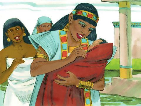 Apocalypse 8 : 10 : Les fleuves et les sources d'eau 19-moz10