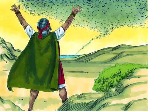 Apocalypse 7 : 1 : Les 4 anges retiennent les 4 vents 5-mozc13