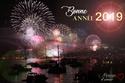 Meilleurs voeux pour 2019 Bonne-13