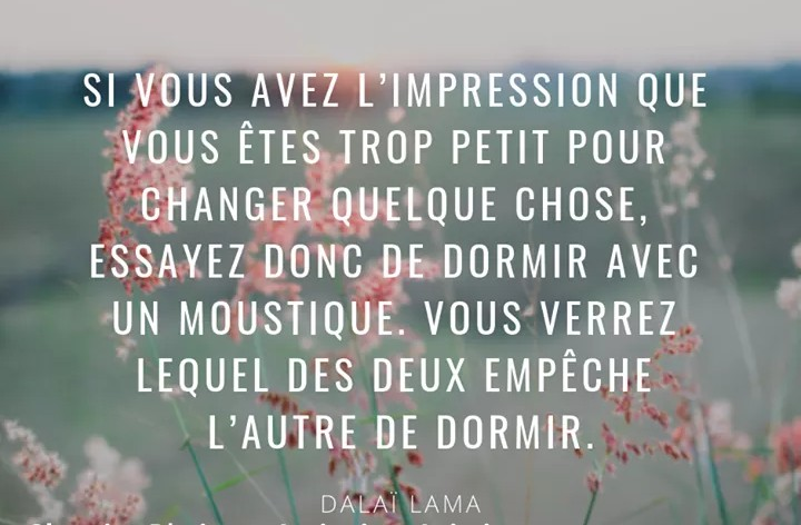 Citations que nous aimons - Page 9 _2019078