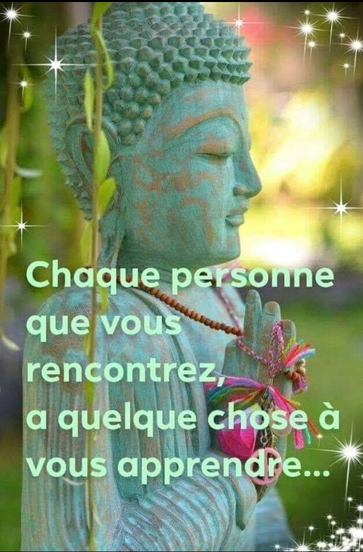 Citations que nous aimons - Page 10 _2019140