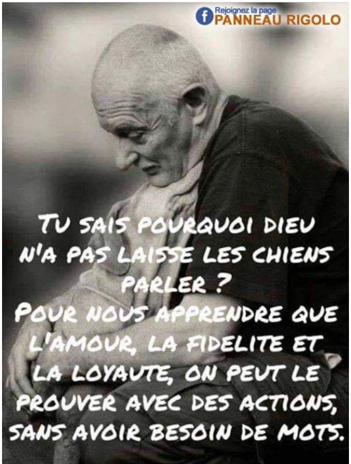 Citations que nous aimons - Page 10 _2019196