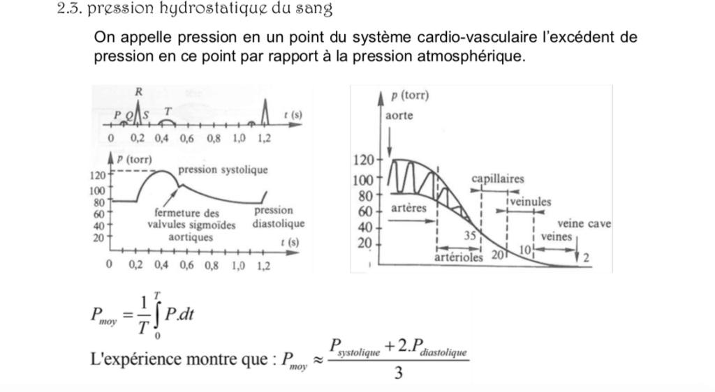 pression hydrostatique du sang