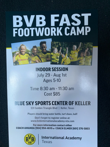 BVB Footwork Camp 15639811