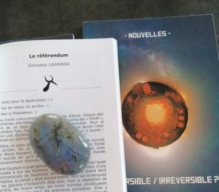 Réversible / Irréversible [BienVenus sur Mars] Rzover14