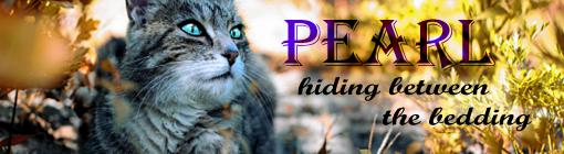 Wat zouden jouw kattennamen in het nederlands zijn? - Pagina 14 Pearl_10
