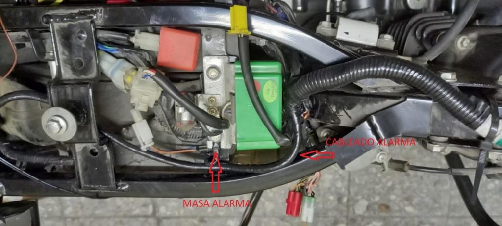 Instalacion alarma x28 M10 y M20 en Rouser 135 ls - Paso a Paso 510