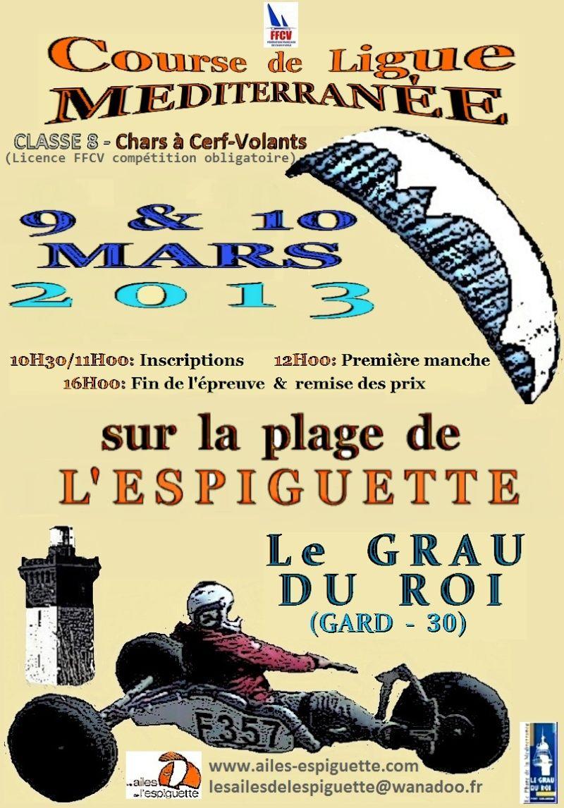 Ligue Espi 9 Mars 2013 9-10_110