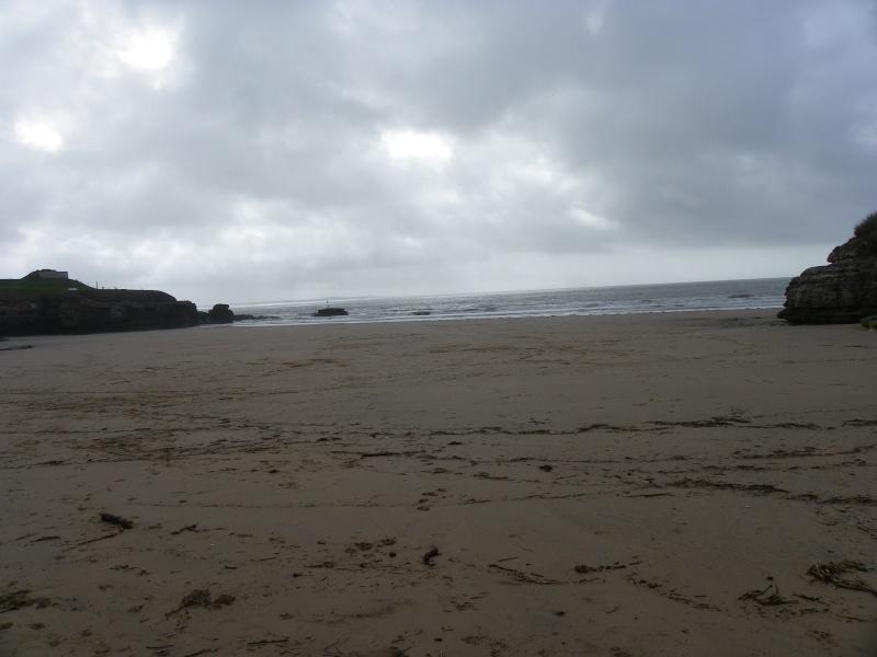 La côte et ses plages entre Royan et Nauzan par le GR4 Imgp5117