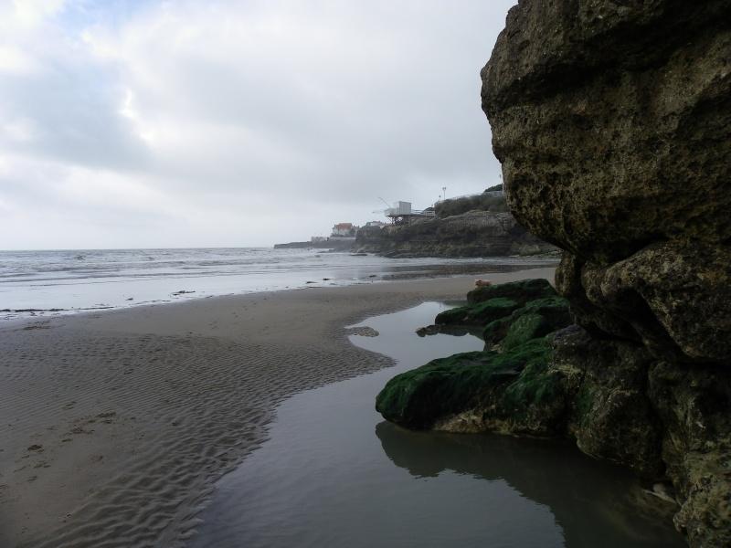 La côte et ses plages entre Royan et Nauzan par le GR4 Imgp5118