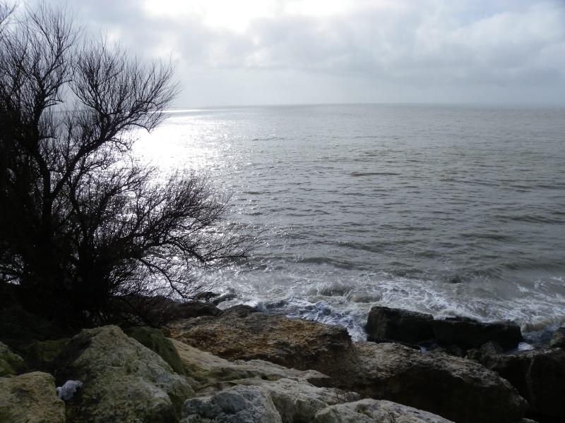 La côte et ses plages entre Royan et Nauzan par le GR4 Imgp5125