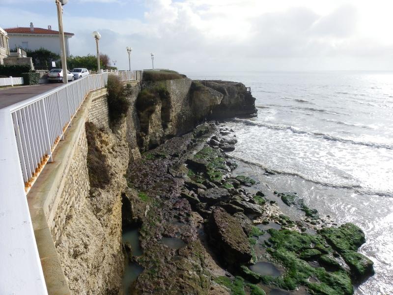 La côte et ses plages entre Royan et Nauzan par le GR4 Imgp5132