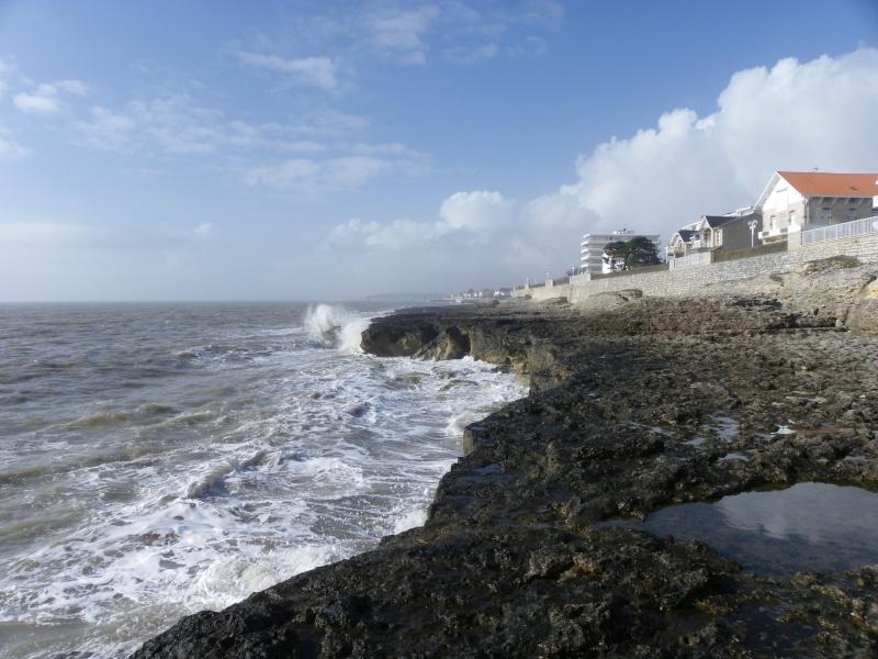 La côte et ses plages entre Royan et Nauzan par le GR4 Imgp5136