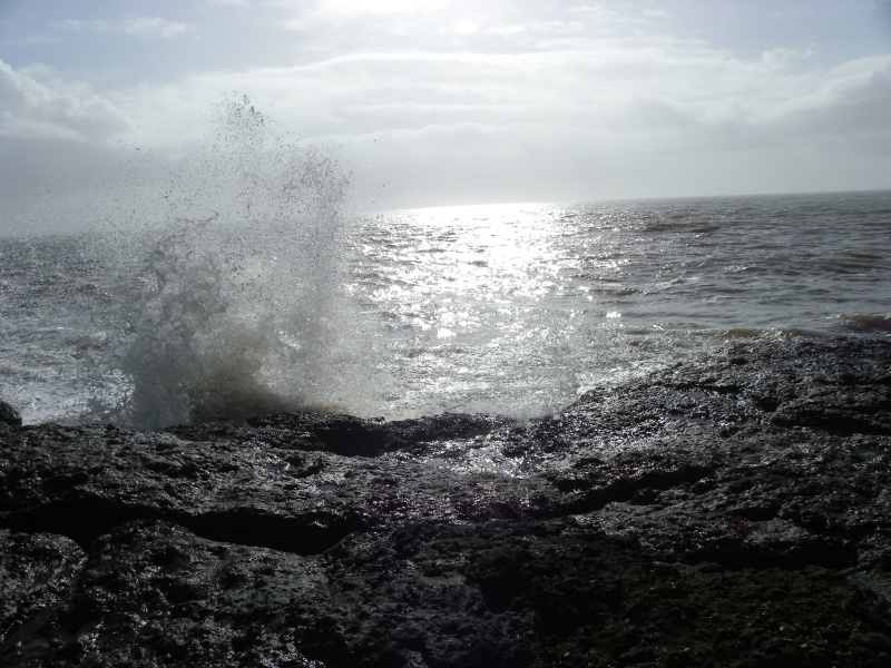 La côte et ses plages entre Royan et Nauzan par le GR4 Imgp5138