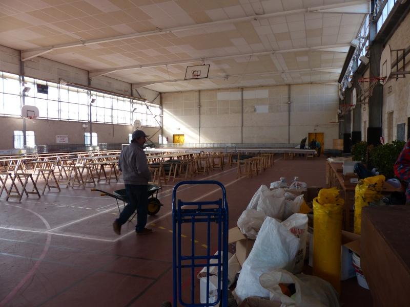 Exposition Nationale d'Aviculture : Rochefort 23 et 24 février 2013 P1230110
