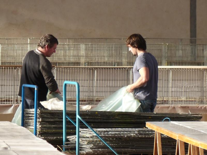 Exposition Nationale d'Aviculture : Rochefort 23 et 24 février 2013 P1230210