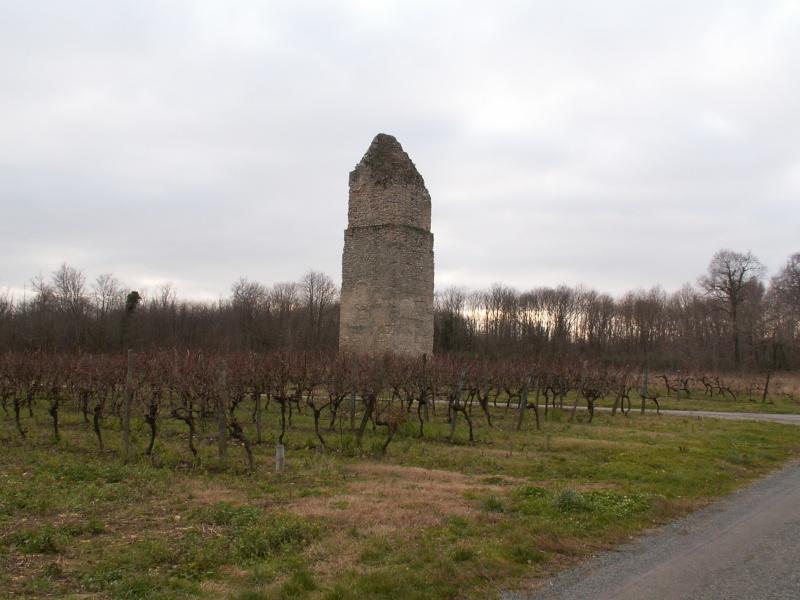 La tour de Pirelonge Pict0049