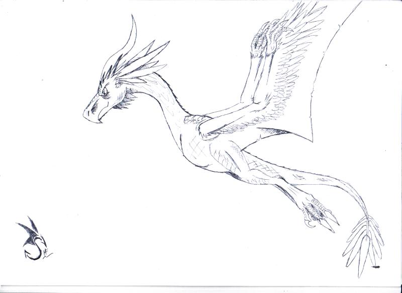 Le Ketzal, prince des cieux Ketzal11