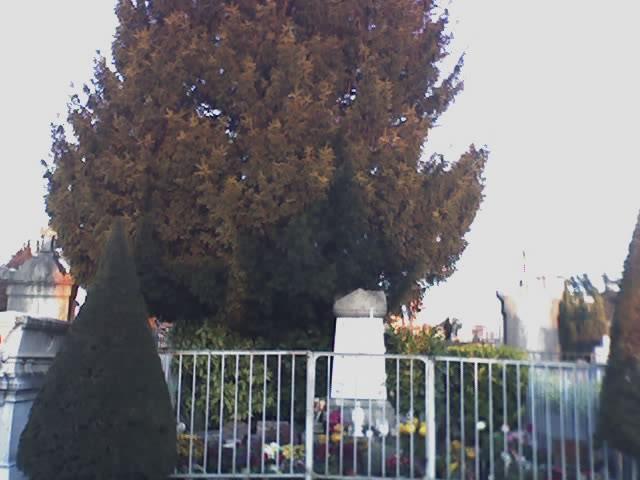 Maitre Philippe de Lyon 07-12-10