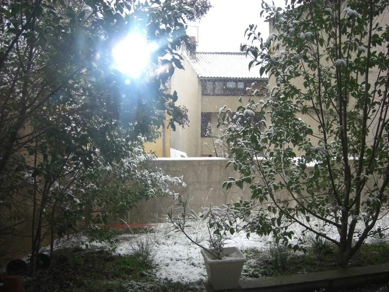 Dossier sur l'épisode neigeux du 26/12/08 à Toulouse Cimg0013