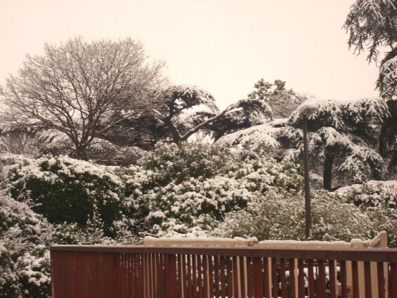 Dossier sur l'épisode neigeux du 26/12/08 à Toulouse Cimg0029