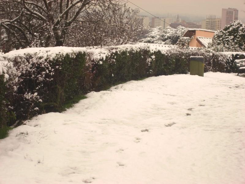 Dossier sur l'épisode neigeux du 26/12/08 à Toulouse Cimg0044