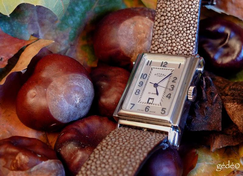 La montre du Vendredi 7 Novembre 2008 : Rotary11