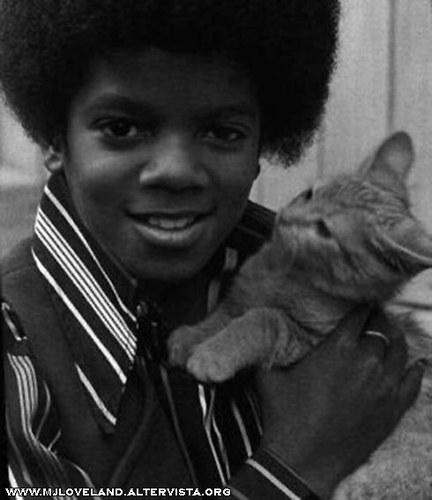 Collection MJ-Story : Michael et les animaux ^^ Studio10