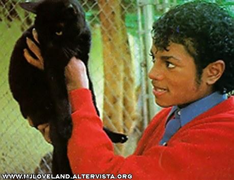 Collection MJ-Story : Michael et les animaux ^^ Studio11