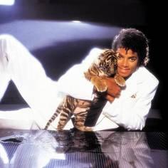 Collection MJ-Story : Michael et les animaux ^^ Studio13
