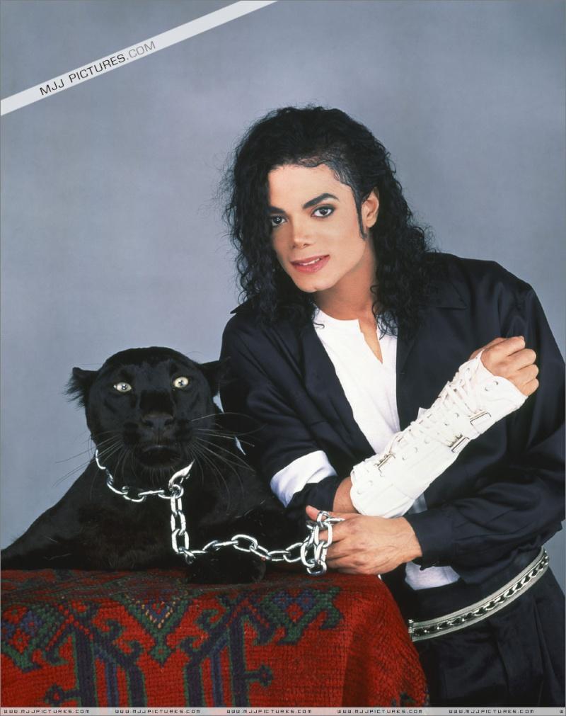Collection MJ-Story : Michael et les animaux ^^ Studio14