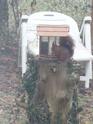 mes écureuils 511_1911