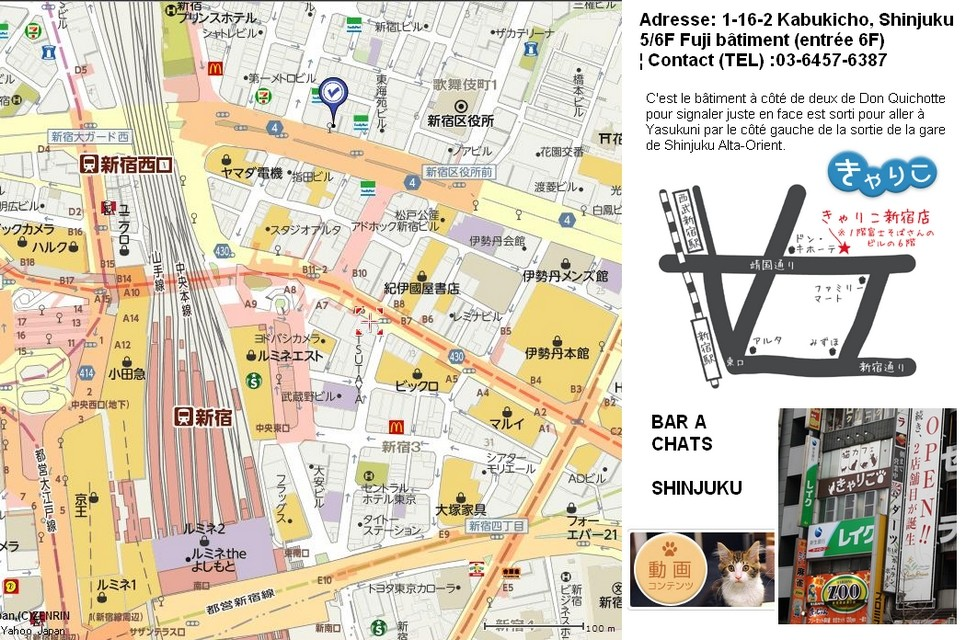 13- TOKYO - CAFES / BARS et LIEUX ATYPIQUES Bar_ch10