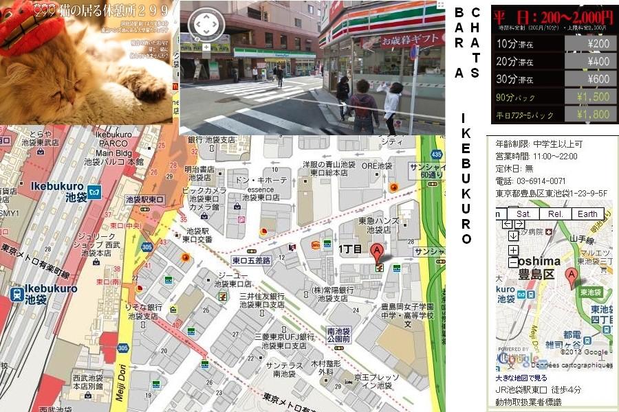 13- TOKYO - CAFES / BARS et LIEUX ATYPIQUES Bar_ch11