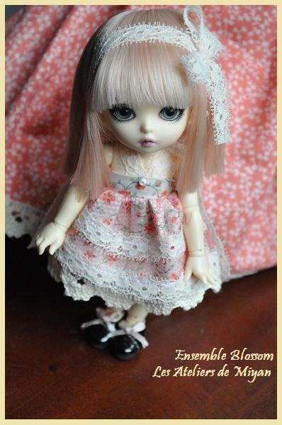 Miyan Blosso10