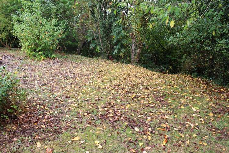 L'automne ! 22092011
