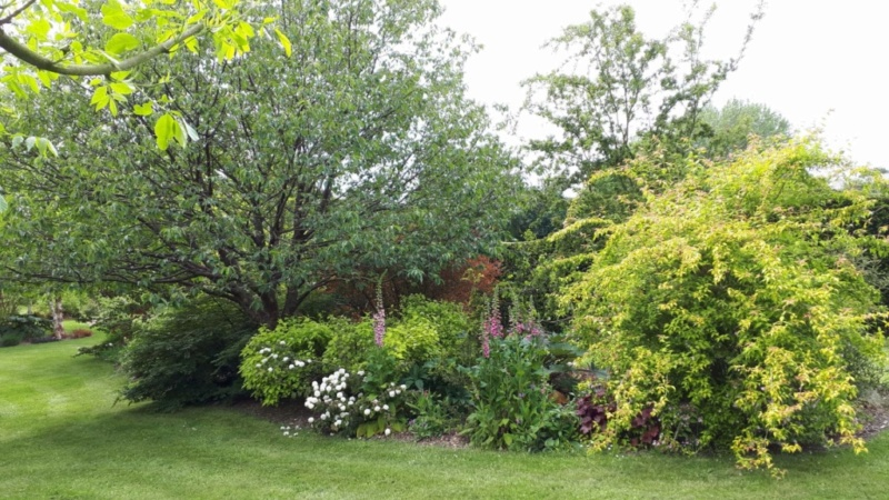 Concours..........'Scènes de jardin' !!! - Page 3 Resize11