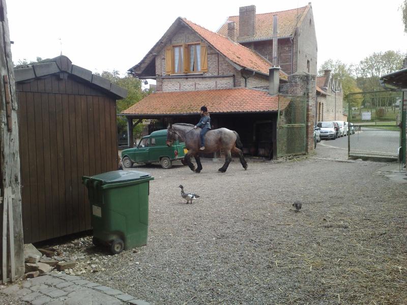 Creuse (Amiens 80): poste avancé Infantery US 06/07 Août2011 26102015
