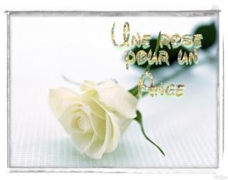 pour Cloé Af0fc412