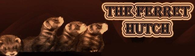 South wales ferret rescue Banner10
