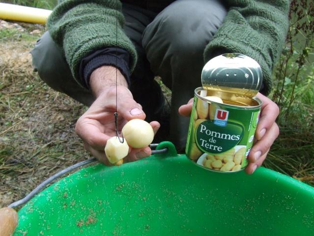 meter de la patate dans votre peche Dscf2314